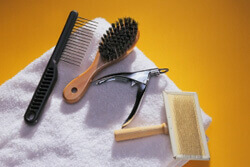 Pet Grooming Equipment